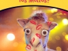 Camel_09